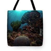 Brains And Crinoids Tote Bag