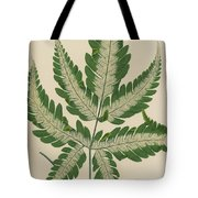 Brake Fern Tote Bag