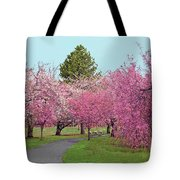 Branch Brook Cherry Blossoms II Tote Bag