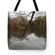 Branch And Water Tote Bag