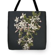 Branch Of A Flowering Azalea, M. De Gijselaar, 1831 Tote Bag