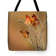 Branch Of Autumn Tote Bag