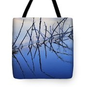 Branch Reflections 484 Tote Bag