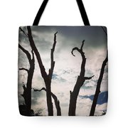 Branch Silouettes On Skeleton Beach Tote Bag