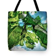 Branch With Green Fruit Tote Bag