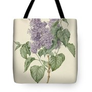 Branch With Purple Lilacs, Maria Geertruyd Barbiers-snabilie, 1786 - 1838 Tote Bag
