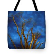 Branches Against Night Sky H Tote Bag