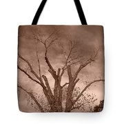 Branches Against Sepia Sky H   Tote Bag