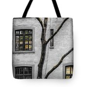Branches And Windows Tote Bag