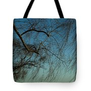 Branches Of A Weeping Willow Tree Tote Bag