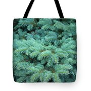 Branches Of Blue Spruce Tote Bag
