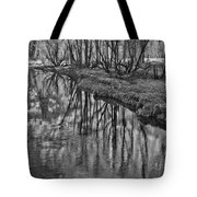 Branches Reflected In Yosemite Tote Bag by Priya Ghose