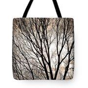 Branches Silhouettes Mono Tone Tote Bag