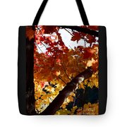 Branching Into Autumn Tote Bag