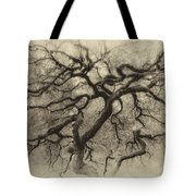 Branching Out In Autumn Antique Tote Bag
