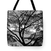 Branching Out In Bw Tote Bag