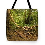 Branching Out In Costa Rica Tote Bag