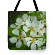 Brandy In Bud On The Pear Tree Tote Bag
