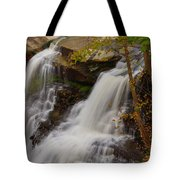 Brandywine Falls II Tote Bag