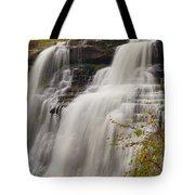 Brandywine Falls IIi Tote Bag