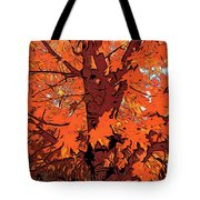 Brandywine  Maple Fall Colors 2 Tote Bag