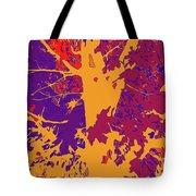 Brandywine  Maple Fall Colors 8 Tote Bag
