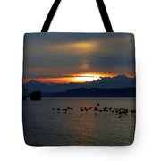 Brants At Sunset Tote Bag