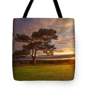 Bratley View Tree Tote Bag