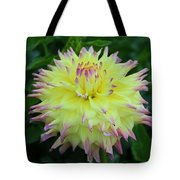 Brave And Crazy Tote Bag