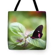 Brave Butterfly  Tote Bag by Cindy Lark Hartman