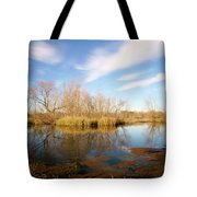 Brazos Bend Winter Bliss Tote Bag