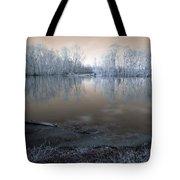 Brazos Bend Winter Fantasy Tote Bag