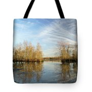 Brazos Bend Winter Reflections Tote Bag