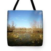Brazos Bend Winter Wetland Tote Bag
