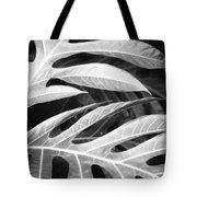 Breadfruit Tree Leaves Tote Bag