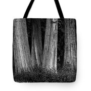 Breadth Of Trees Tote Bag