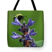 Bumble Bee Breakfast Tote Bag