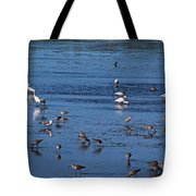 Breakfast Is For The Birds Tote Bag