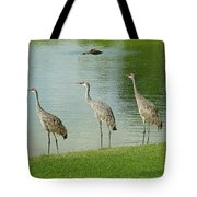 Breakfast Lunch And Dinner Tote Bag