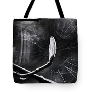 Breaking Light Tote Bag