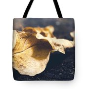 Breaks Of Autumn Tote Bag