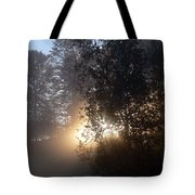 Breath Of Sunshine Tote Bag