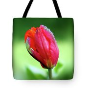 Breathless Beauty Tote Bag
