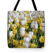 Breathtaking Field Of Blooming Yellow And White Tulips Tote Bag