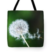Breezy Dandelion Tote Bag
