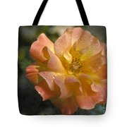 Bridal Pink Yellow Hybrid Tea Rose Genus Rosa Tote Bag