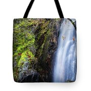 Bridal Veil  Falls 3 Tote Bag