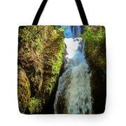Bridal Veil Falls, Oregon Tote Bag
