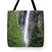 Bridalvail Fall And Raven Tote Bag