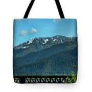 Bridge Alaska Rail  Tote Bag